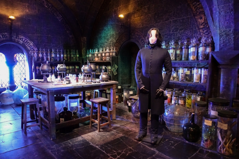Severus Snape costume at the Potions classroom
